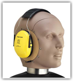 45CB with Hearing Protector